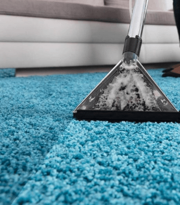 Sanitization Of Carpet