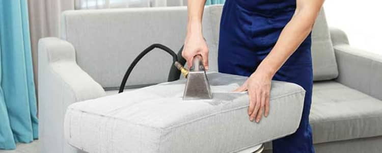 Best Upholstery Cleaning Logan